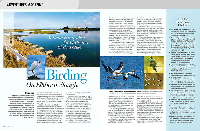 Lifestyle magazine design spread about birding with views of Elkhorn Slough and birds seen there